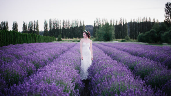 LavenderStyledShoot_0061-590x332.jpg
